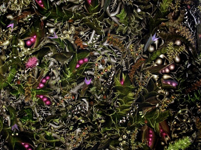 6)Lauren-Kelly,Funiculus-Umbilicalis-and-Anchored-Specimens,--Fabric-2014-Photo.png