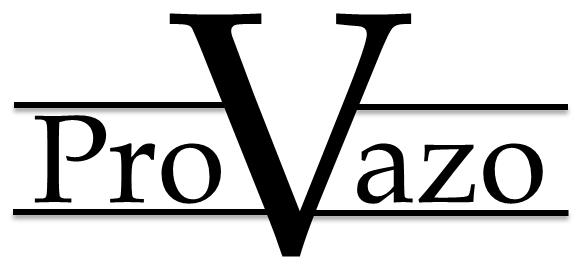 ProVazo (White Background).png