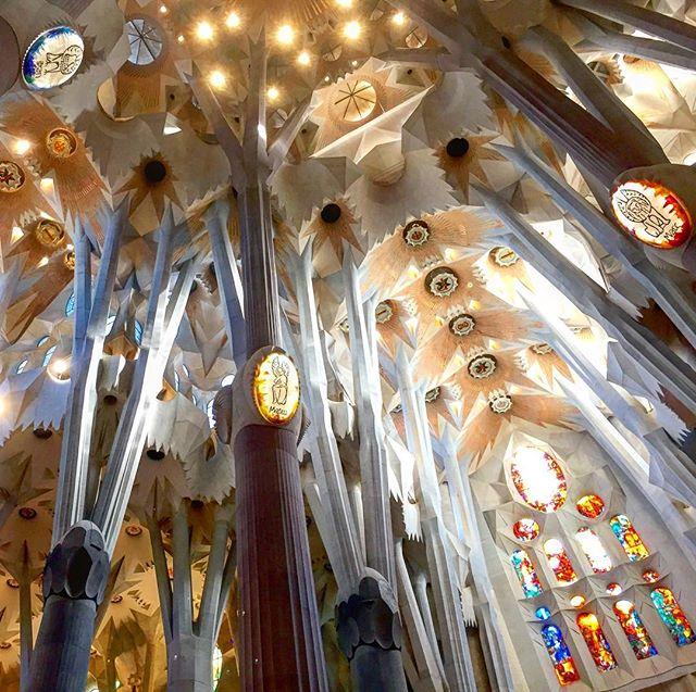 Tarde en la Sagrada Familia 🌅⛪️🇪🇸 #tapas #cañas