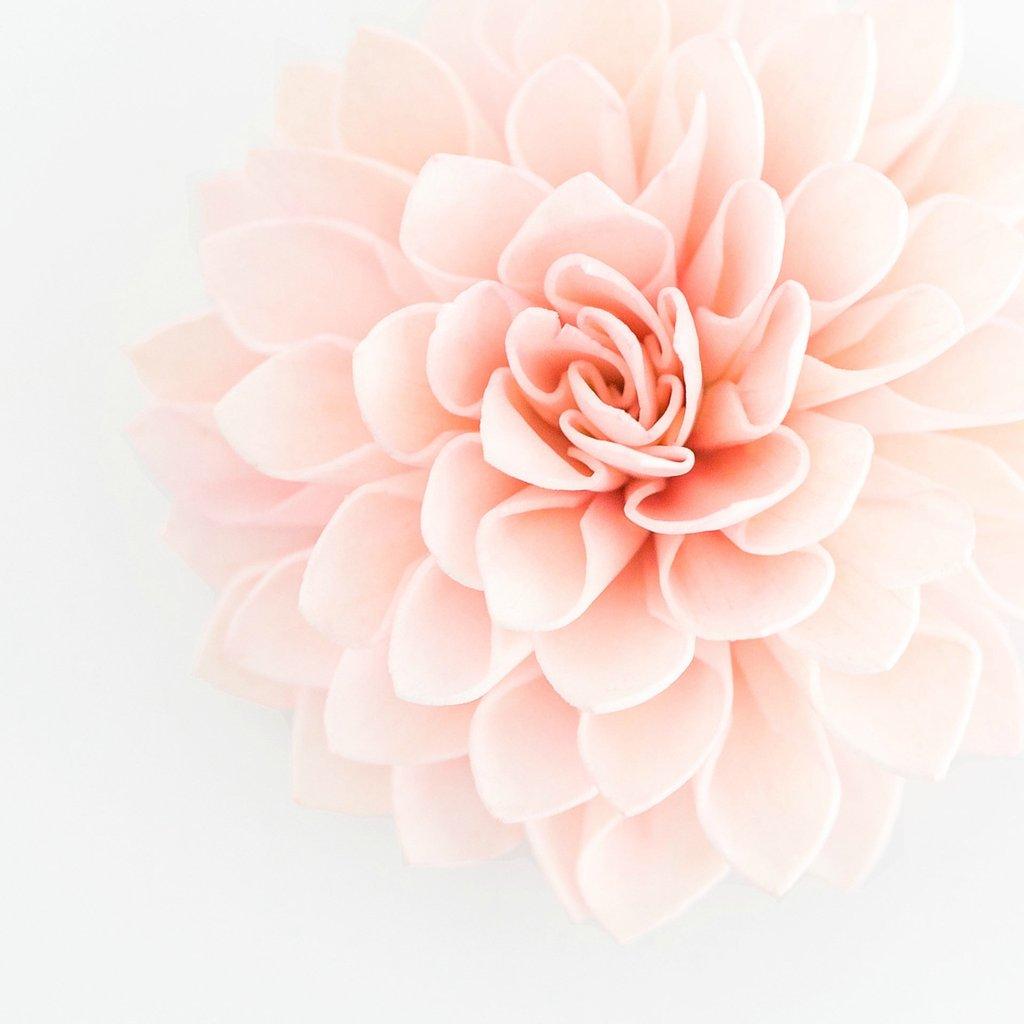 Blush, Pink & White Wedding Package:  $2,800