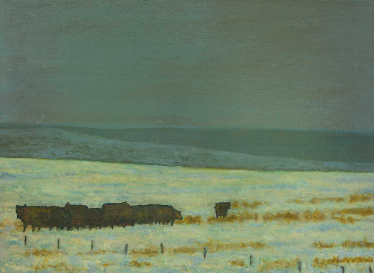 """Cattle on the Front Range"""