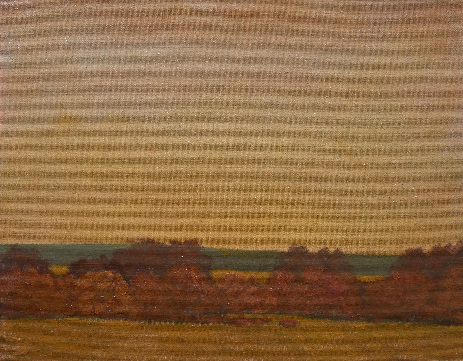 """""""November Sunset"""""""