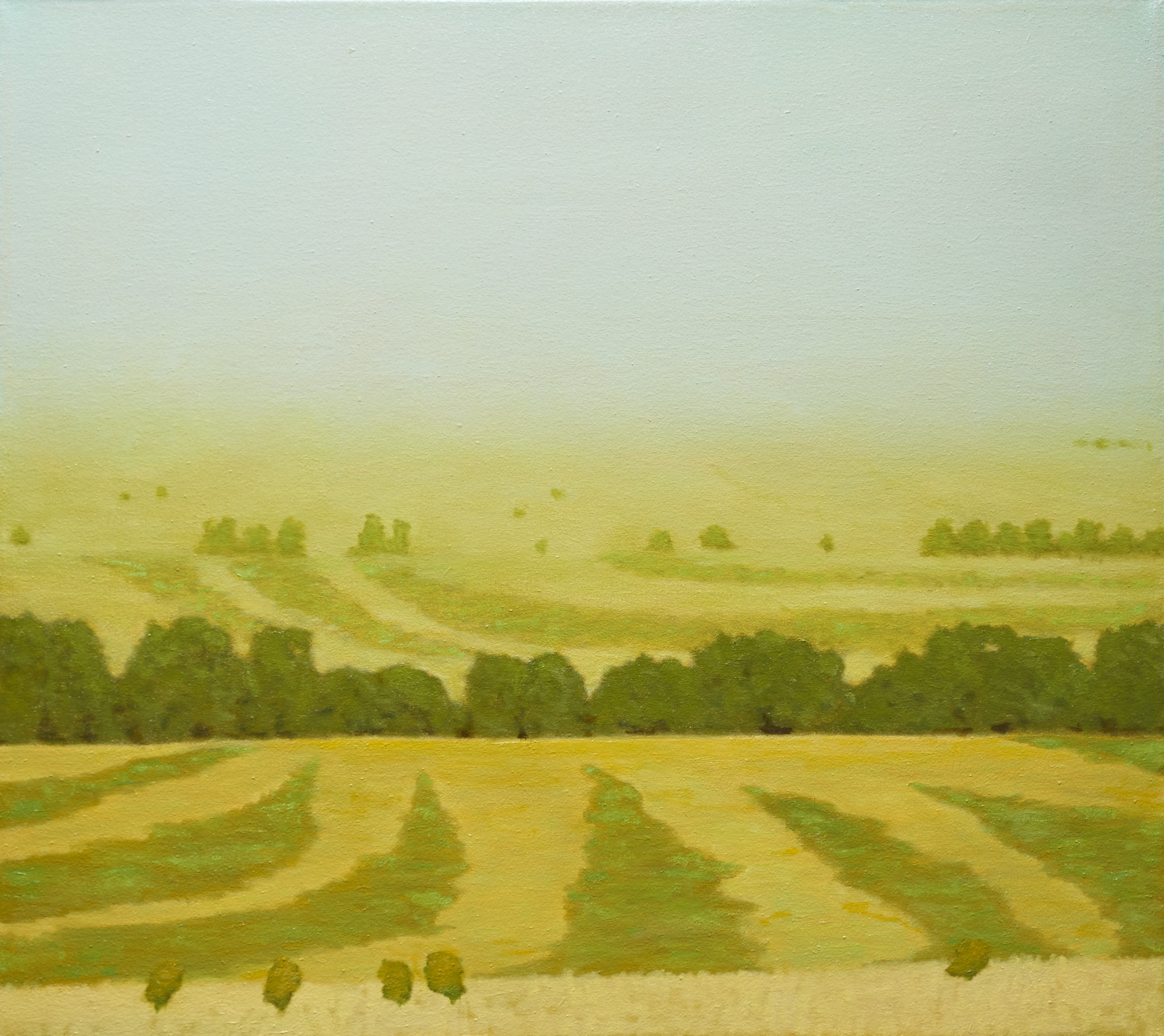 """Hayfields at Sunrise"""