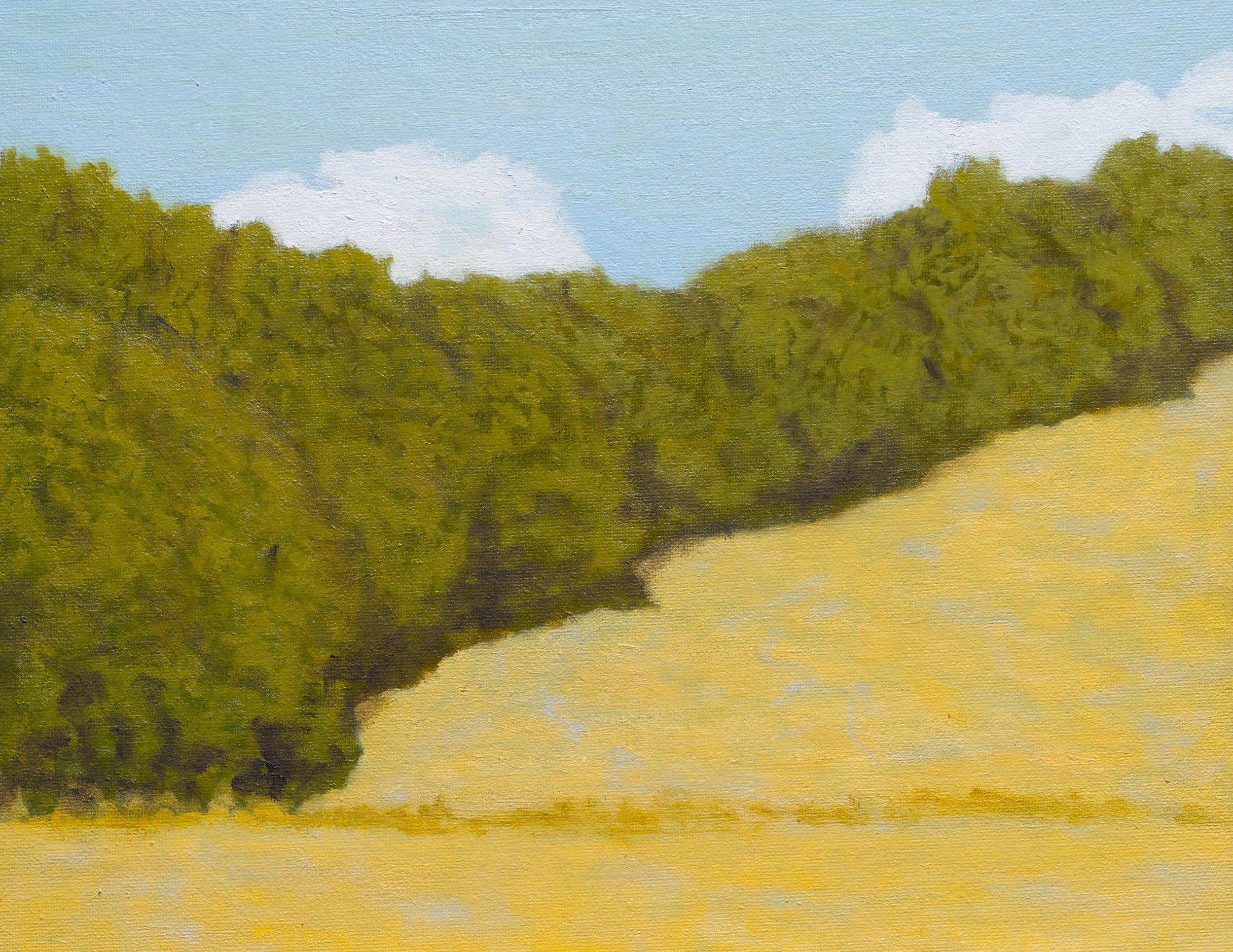"""""""Hillside, Marin County"""""""