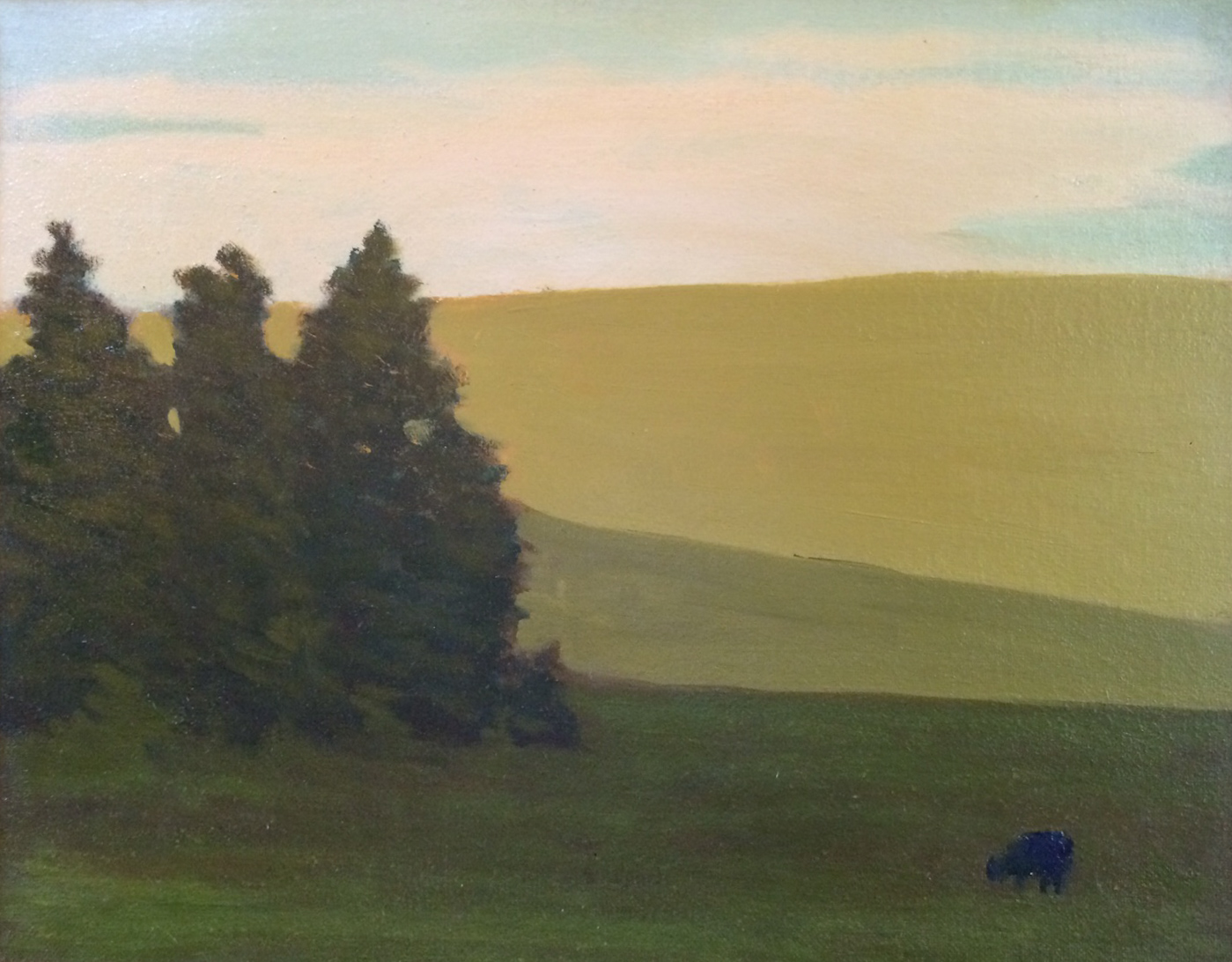 """Lower Pasture"""