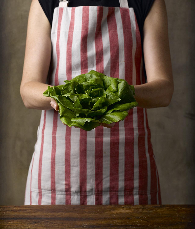 Bibb_lettuce_31550.jpg