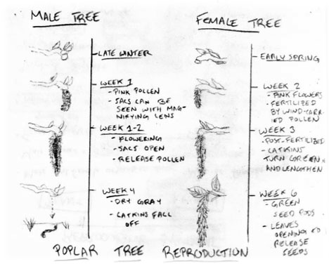 Biology1.jpg