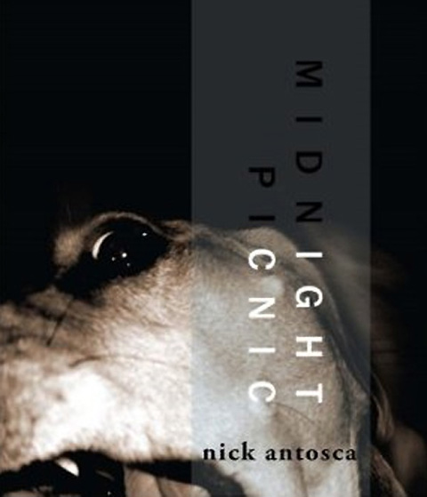 Cover of   Midnight Picnic