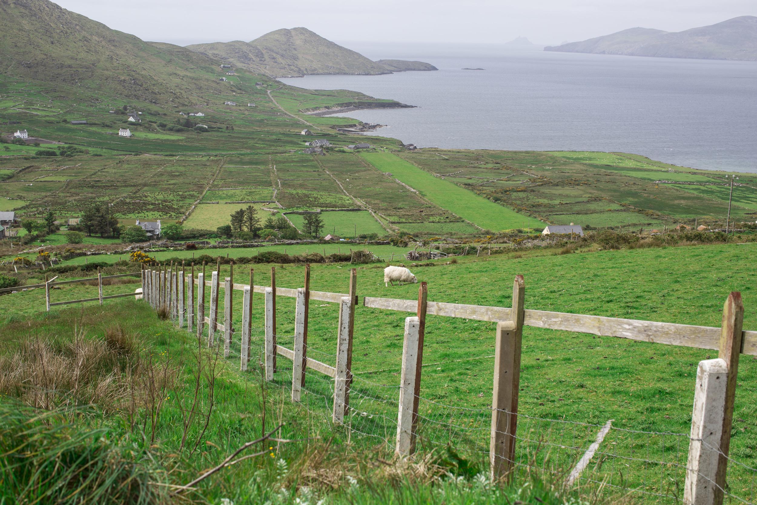 Ireland-51_1.JPG