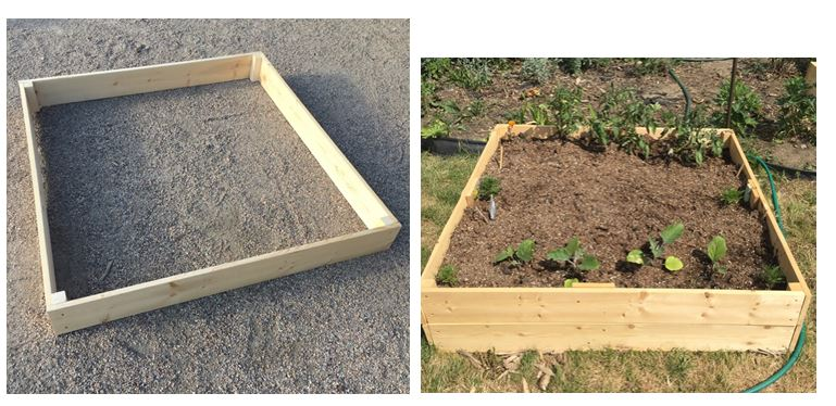 BLOG - Raised Bed4.JPG