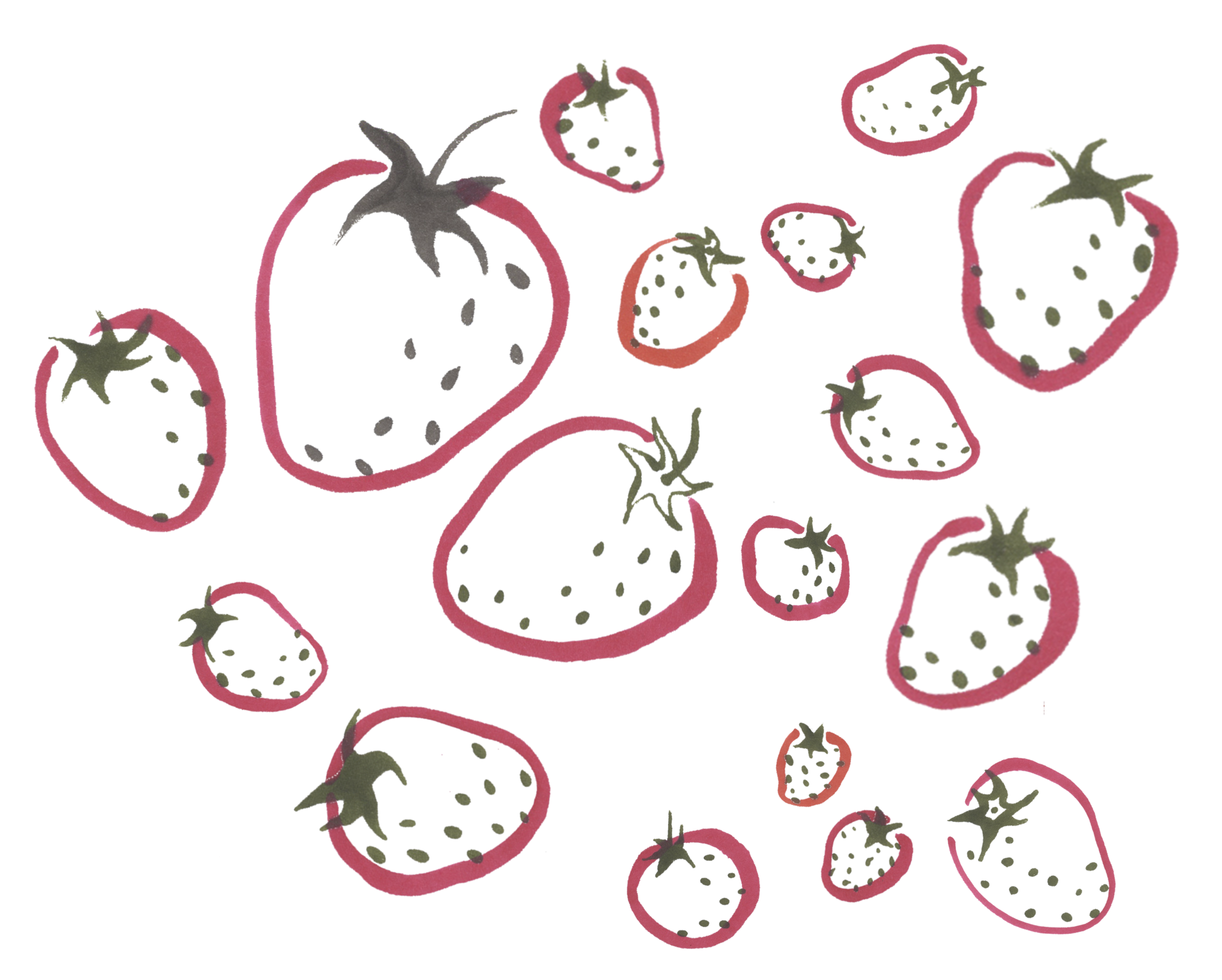 strawberry!.png