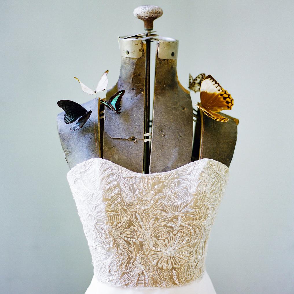 Entomology-Inspired Wedding Editorial