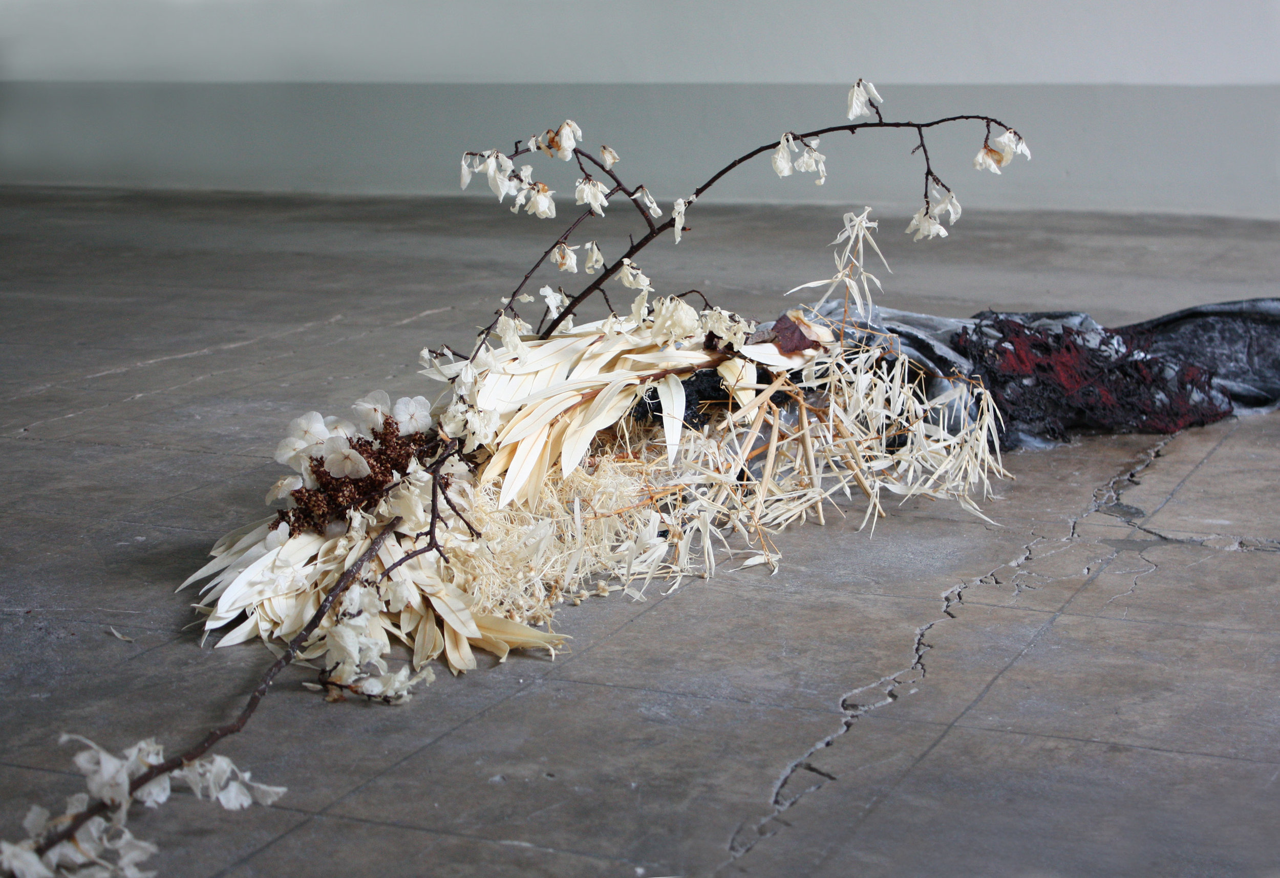 Generous Images Unable To Reach   Plants processed by removing chlorophyll, a deceased person's clothing regenerated into textile fibres and later crystallized in wellness salts, silicon cast of the person's clothing items before regeneration, materially reversed polyester clothing, materially reversed plastic components from exteroceptive sensors used in humanoid robotics, 2018  Photo: Luca Vanello