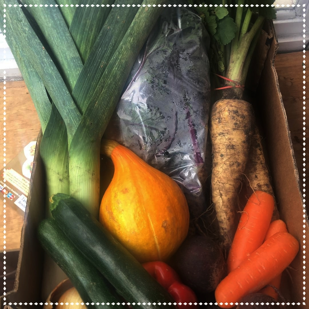 Veg Only Box - + Small (£10)+ Medium (£15)+ Large (£20)