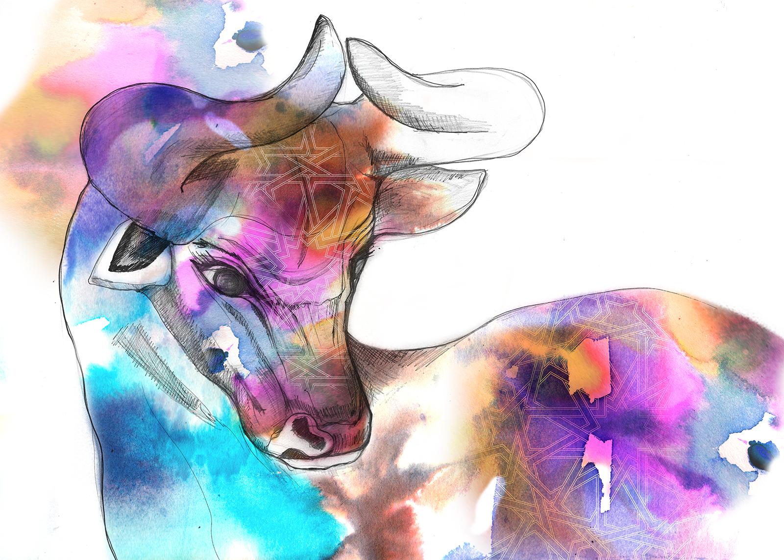 Imagination Illustrated Taurus print