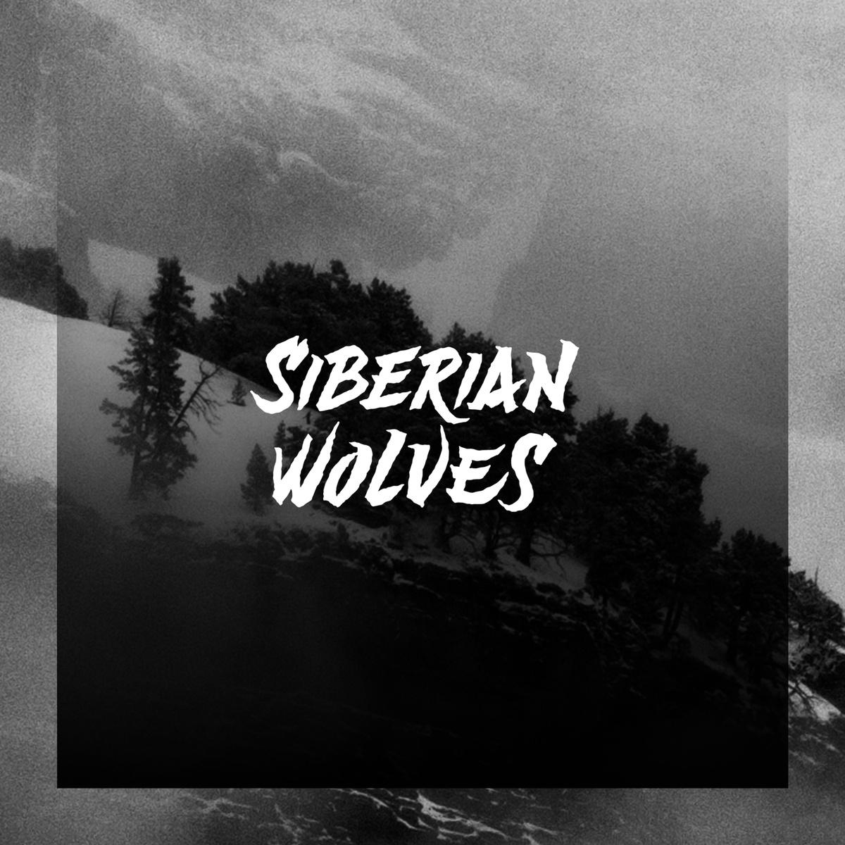 SIBERIAN WOLVES.jpg