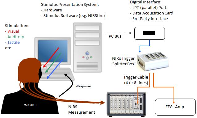 Concurrent NIRS + EEG recording - example method