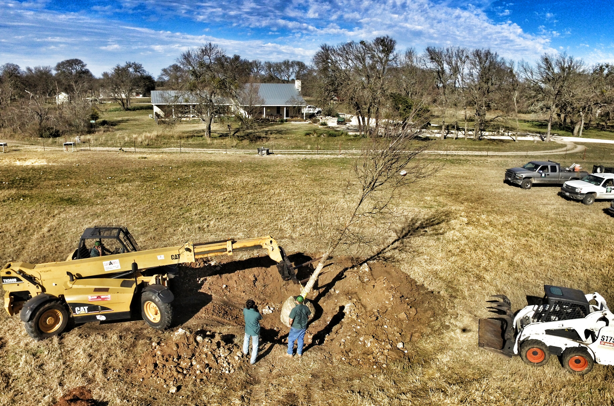 Aerial photo of Superior Arborists planting a 25' tall Cedar Elm tree in Fredericksburg, Tx. The tree (dormant) weighed over 6,000 lbs and was part of a tree planting project for a horse training operation.