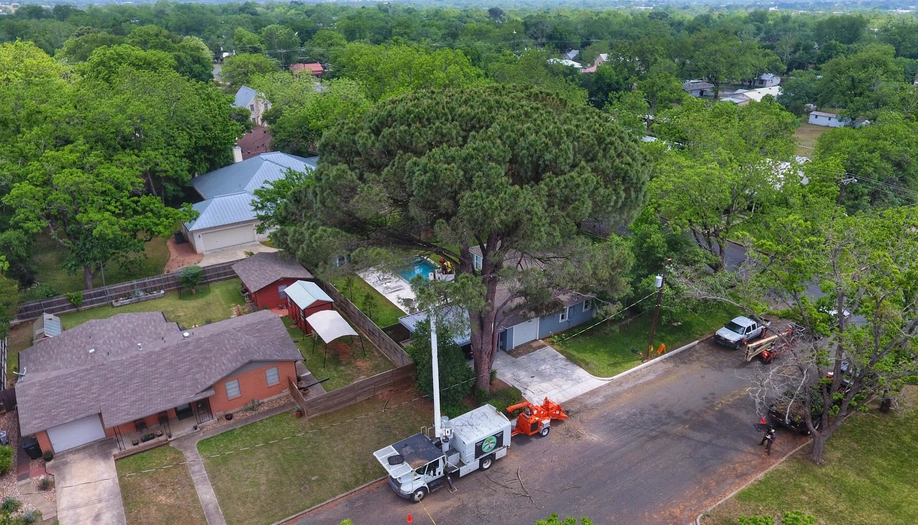 Aerial BucketNick.jpg