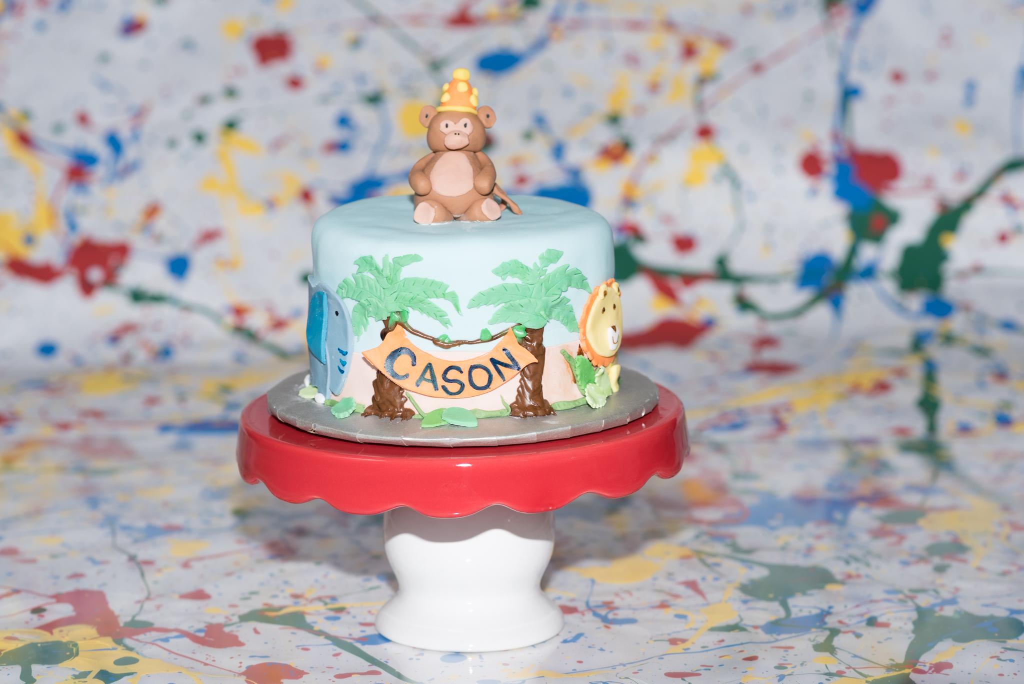 cakesmashfb-5768.jpg