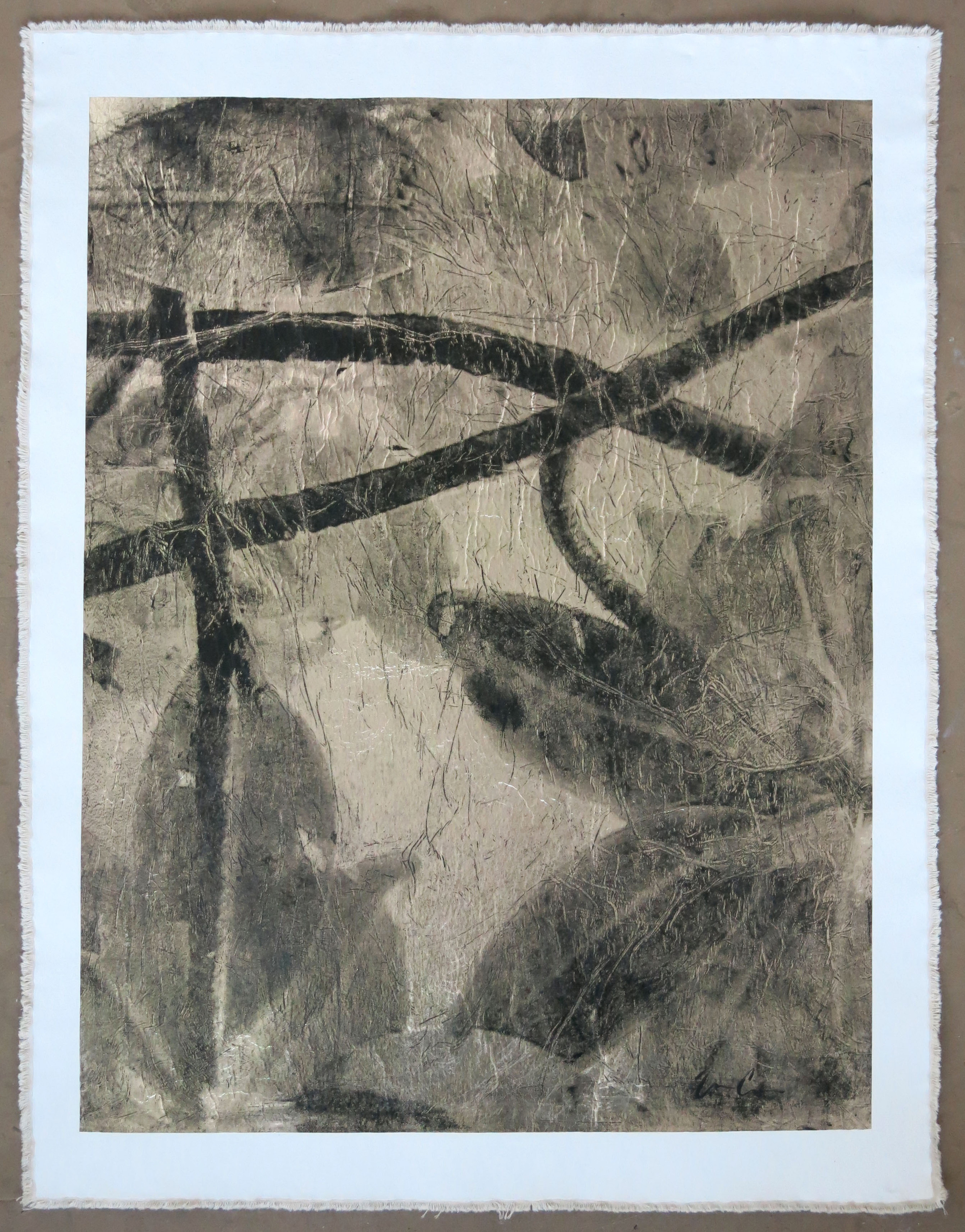 Tropical Thicket, Negative
