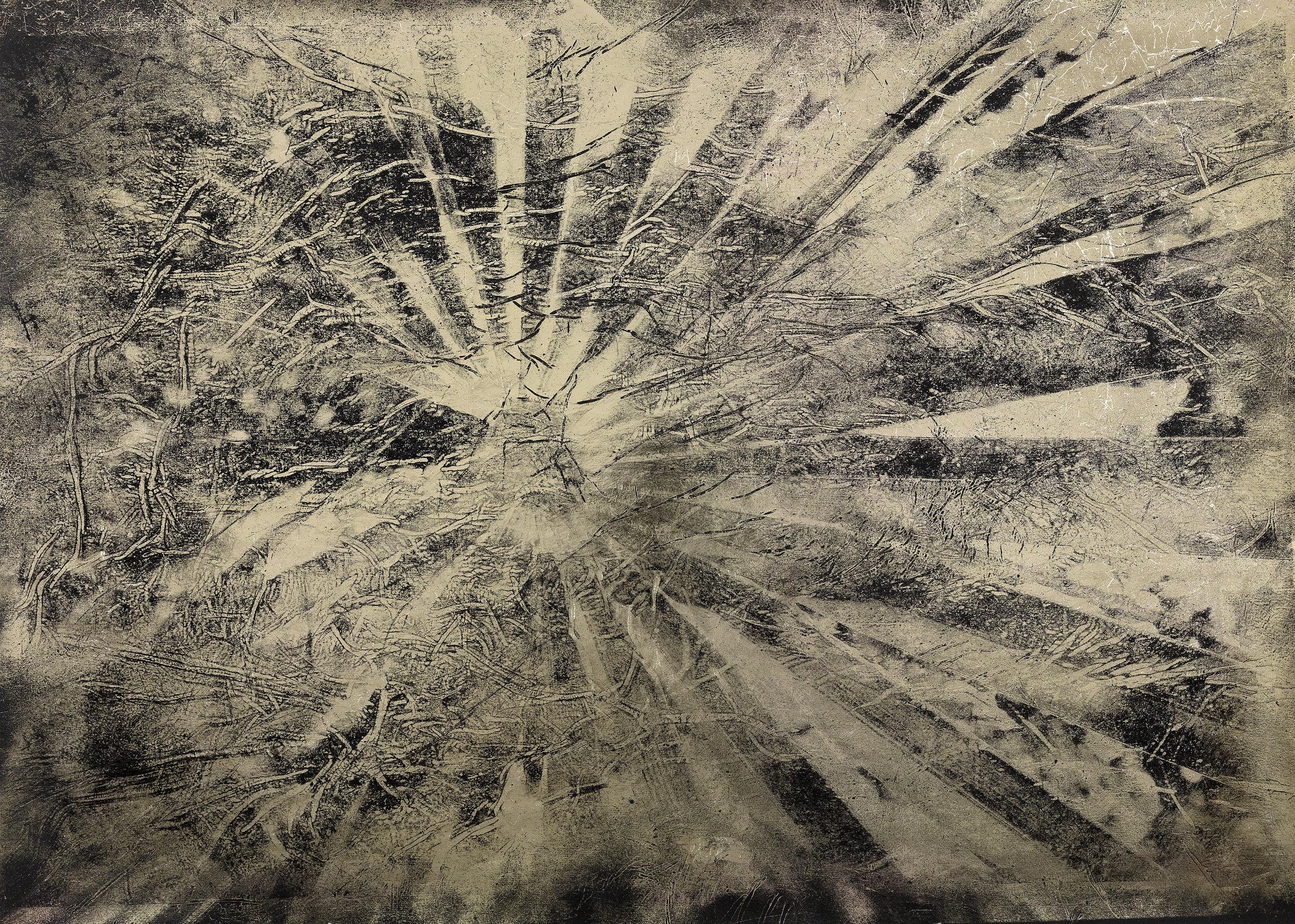 Cocotrina Halesandar, Negative