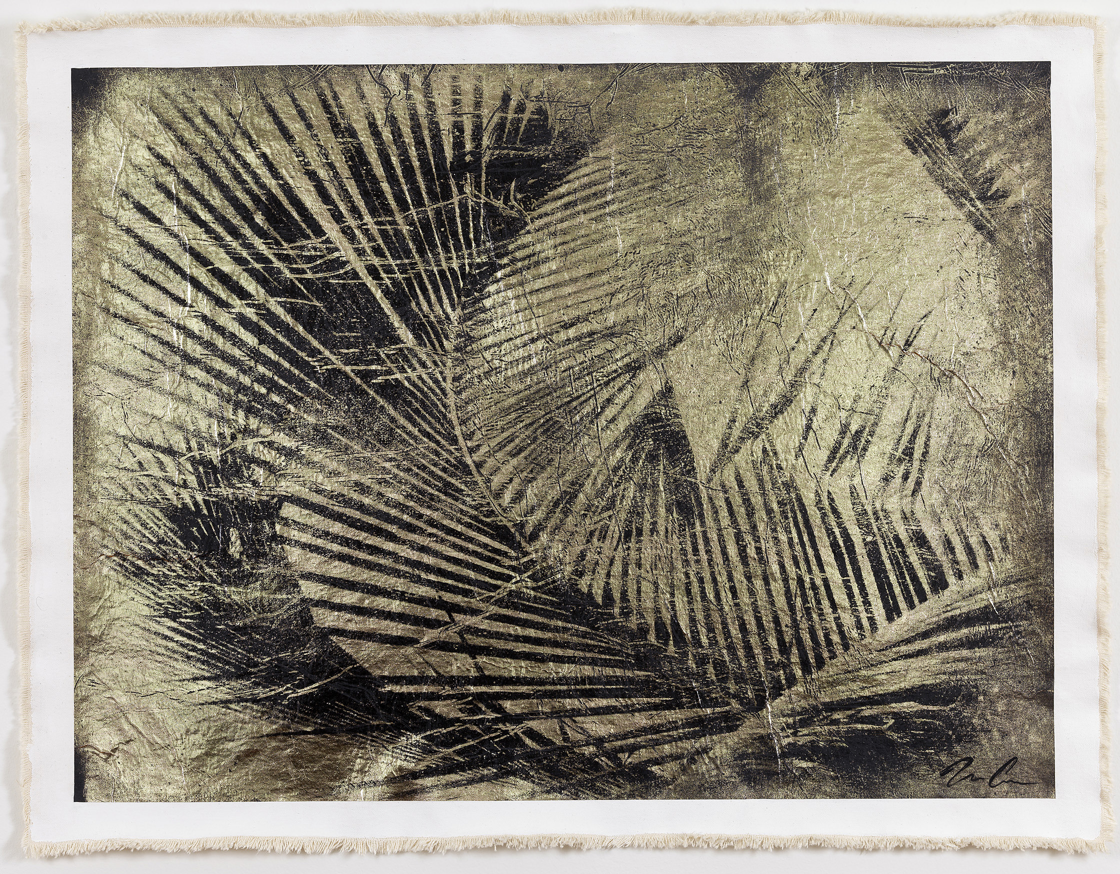Cuban Palm I