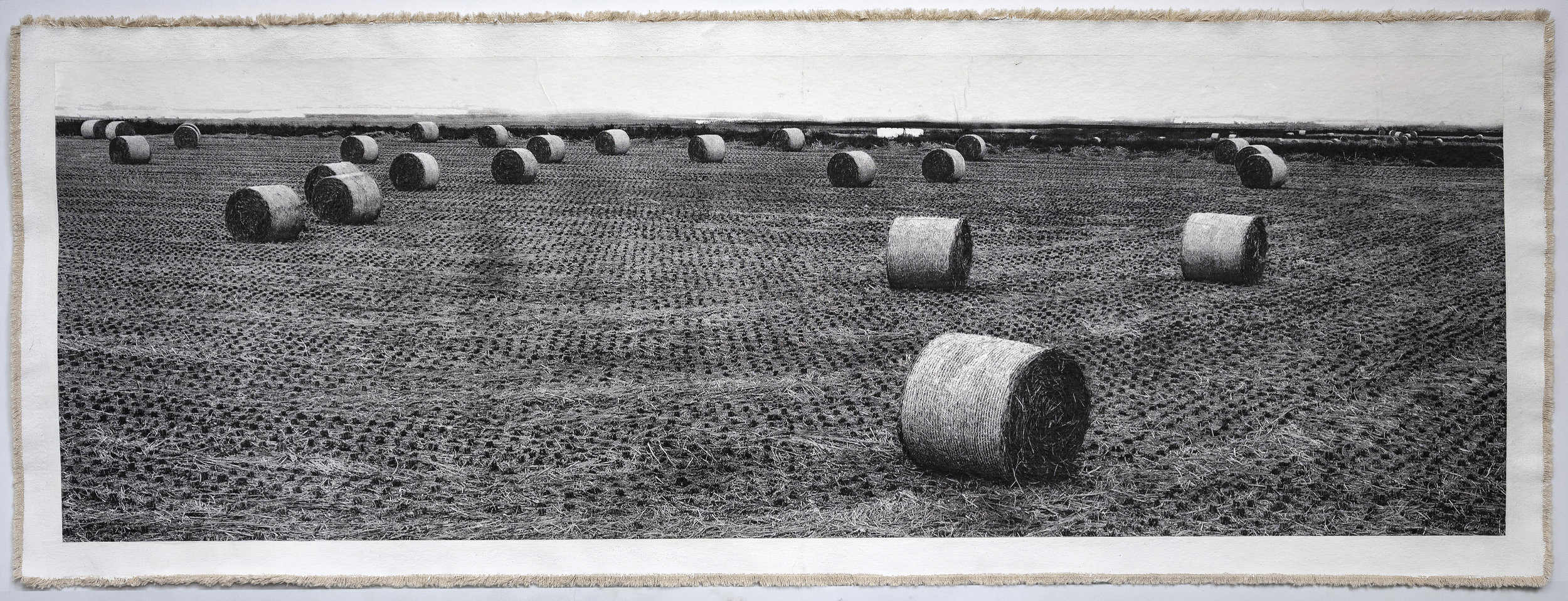 Rice Field Aso, IV