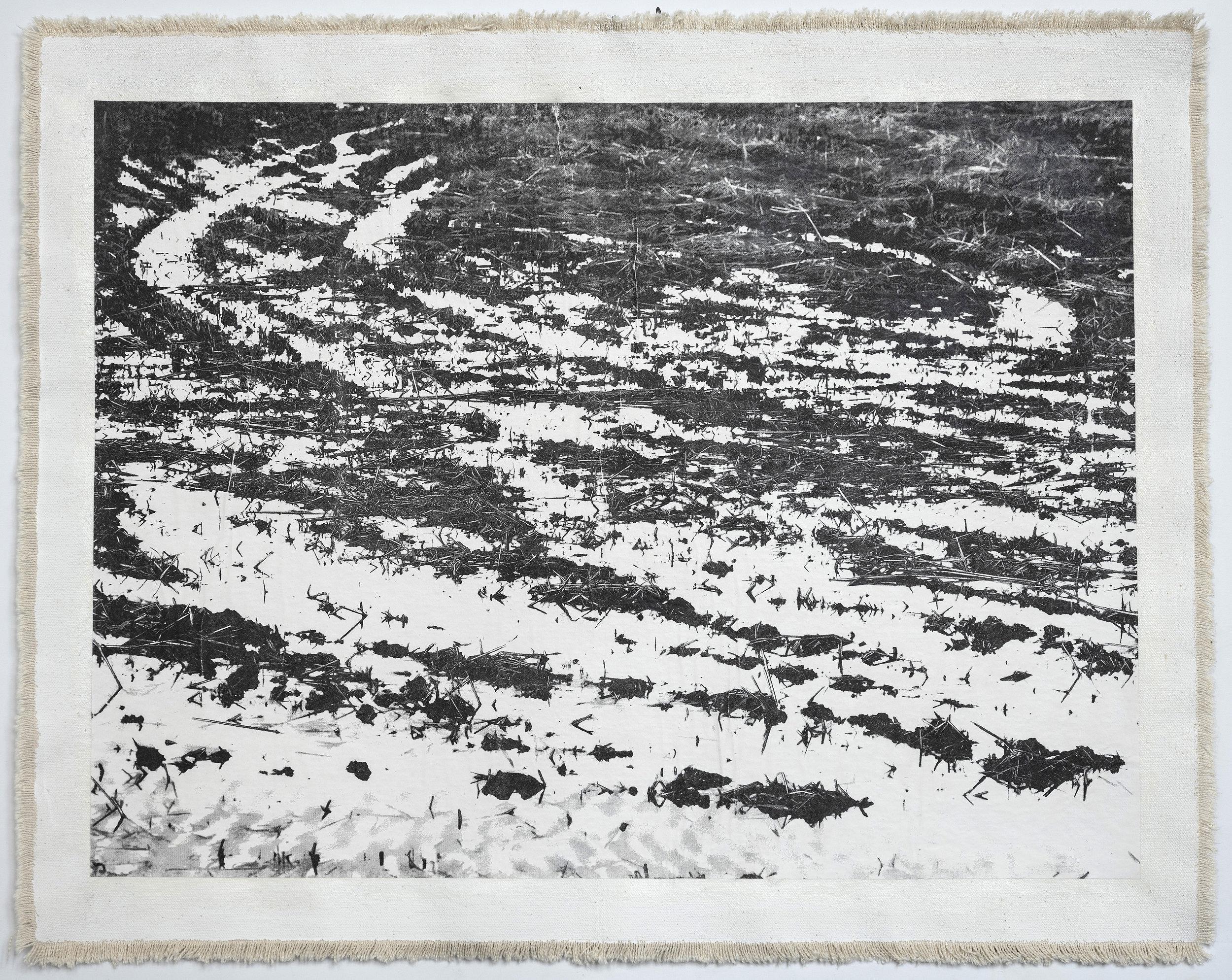 Rice Field, Aso VI