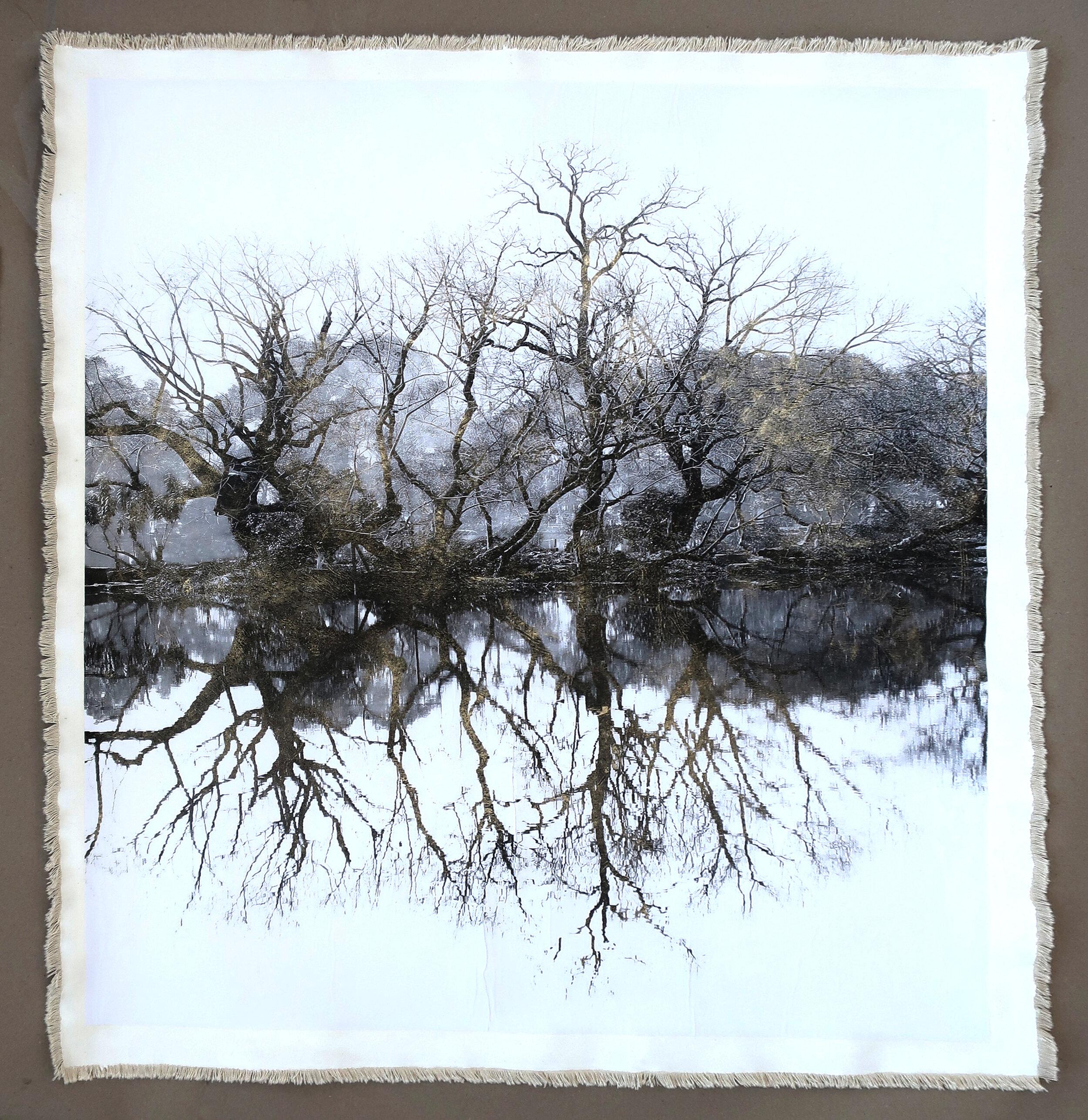 Tree Silhouette West Lake II