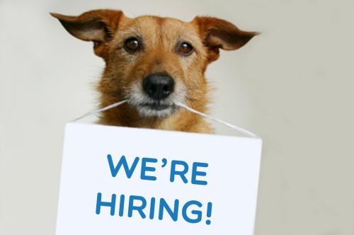 No current vacancies for employment. -