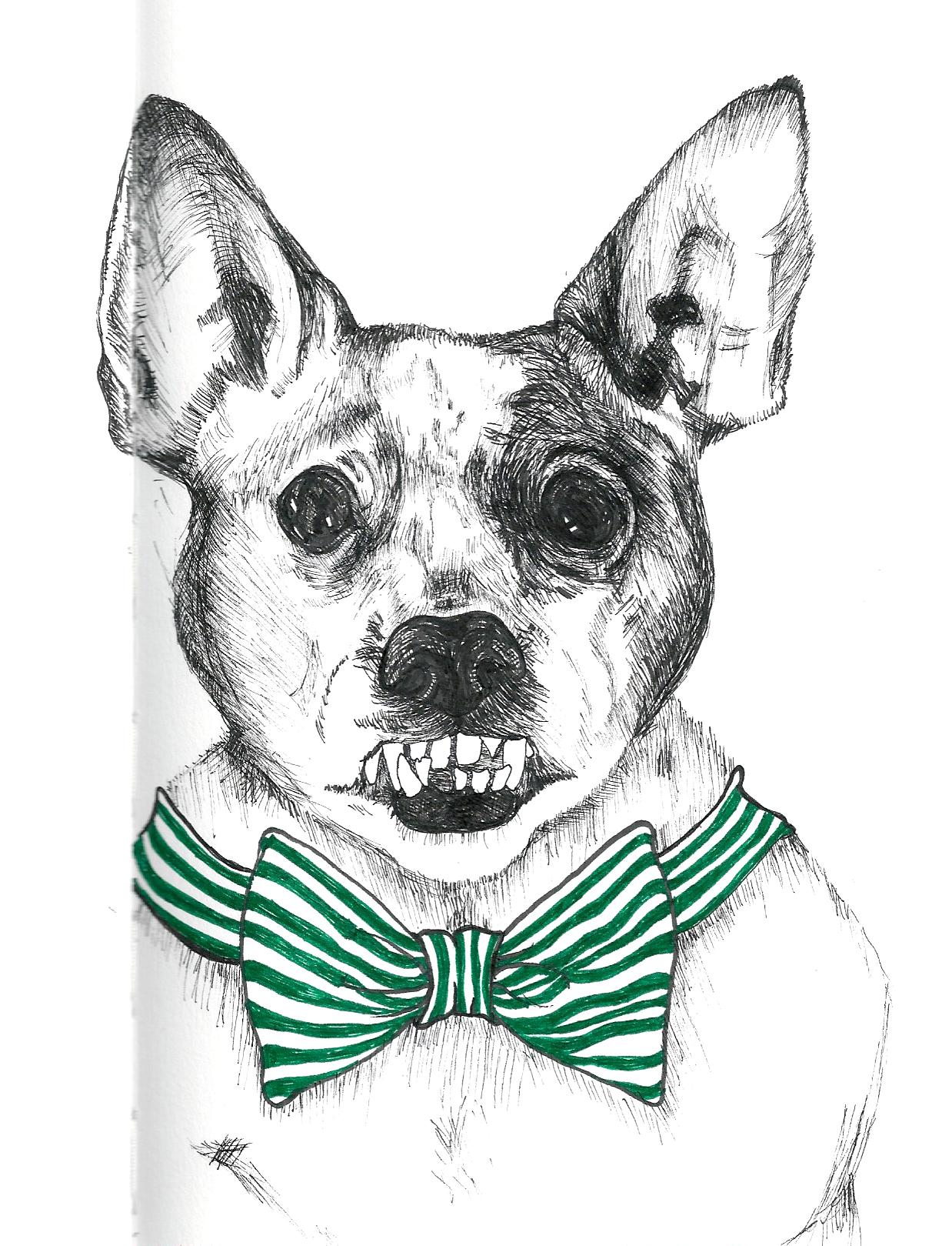 Becky's Dog.jpg