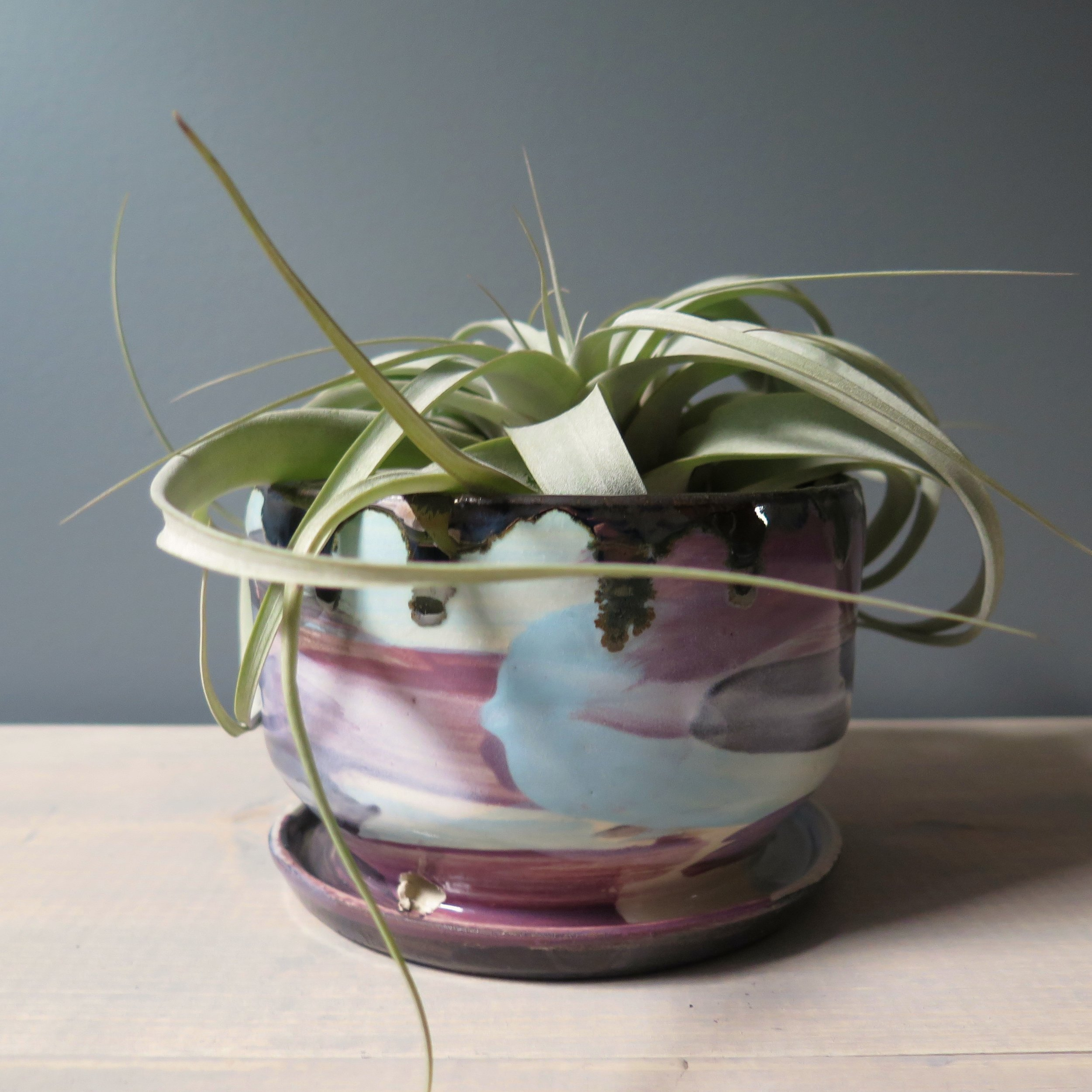 mini planter slate sq.jpg