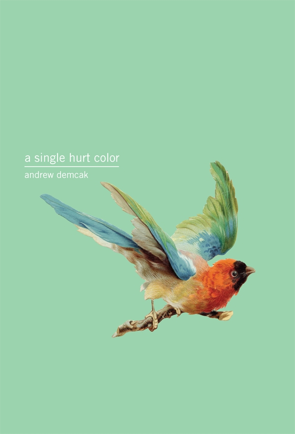 A Single Hurt Color by Andrew Demcak