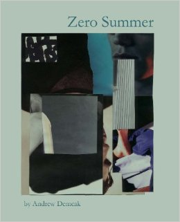 Zero Summer by Andrew Demcak