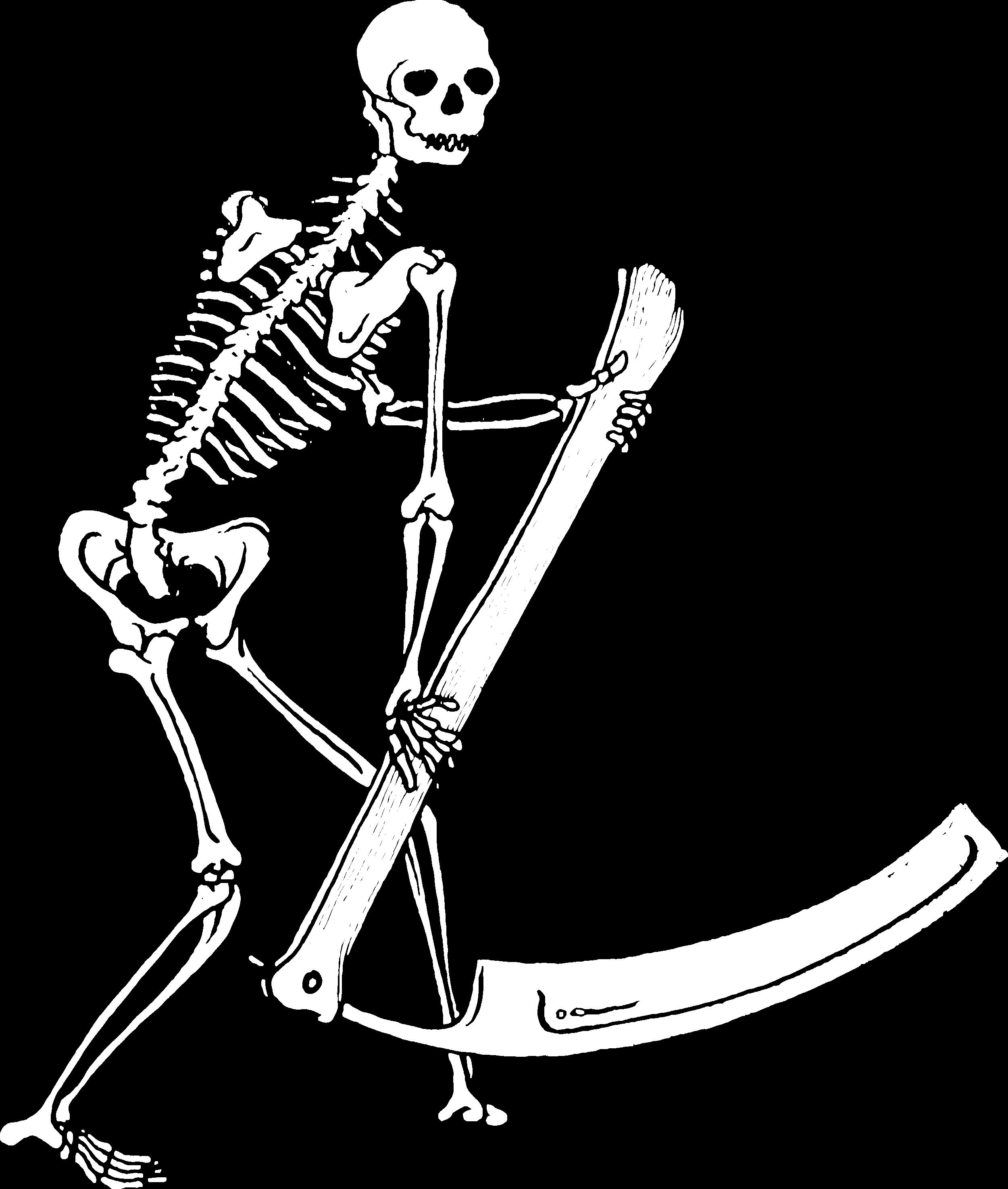 skeleton_solid_trn_WHITE.png