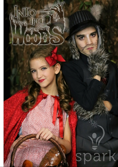 into the woods 2.jpg