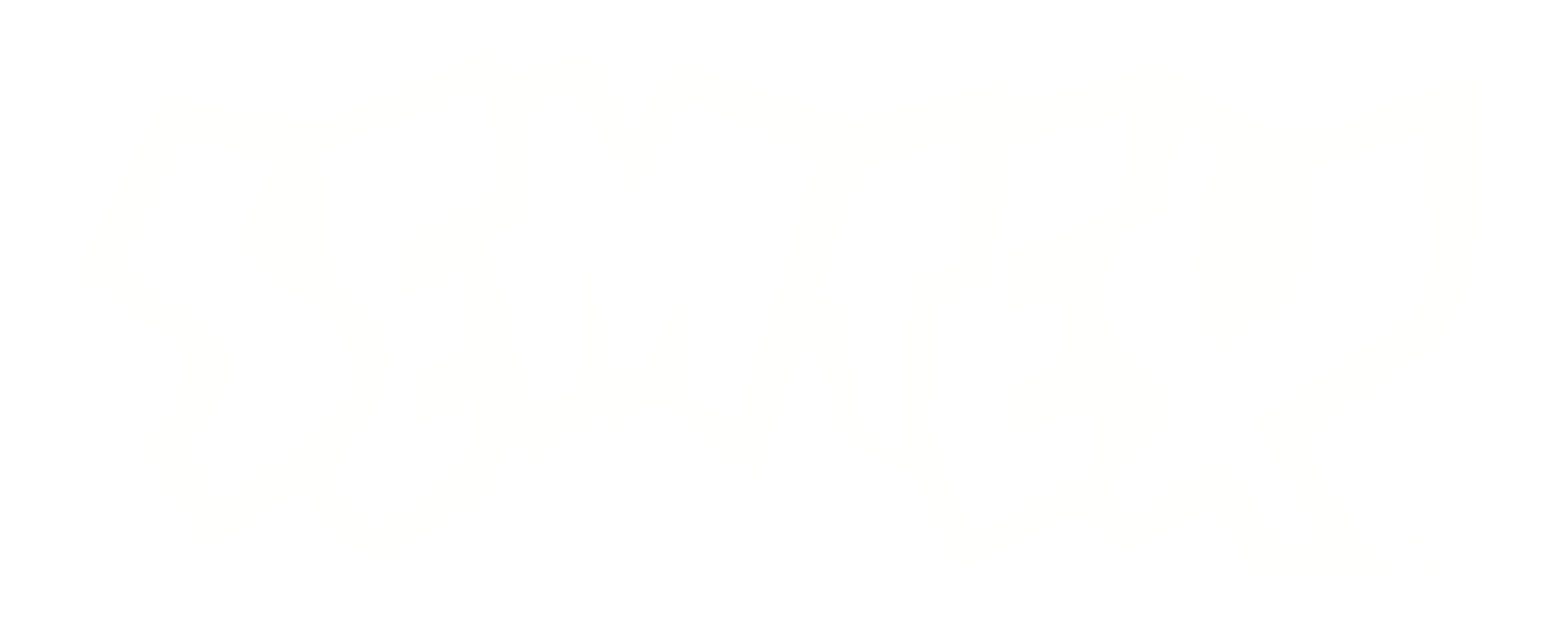 WHITE OUTLINE 2017.png