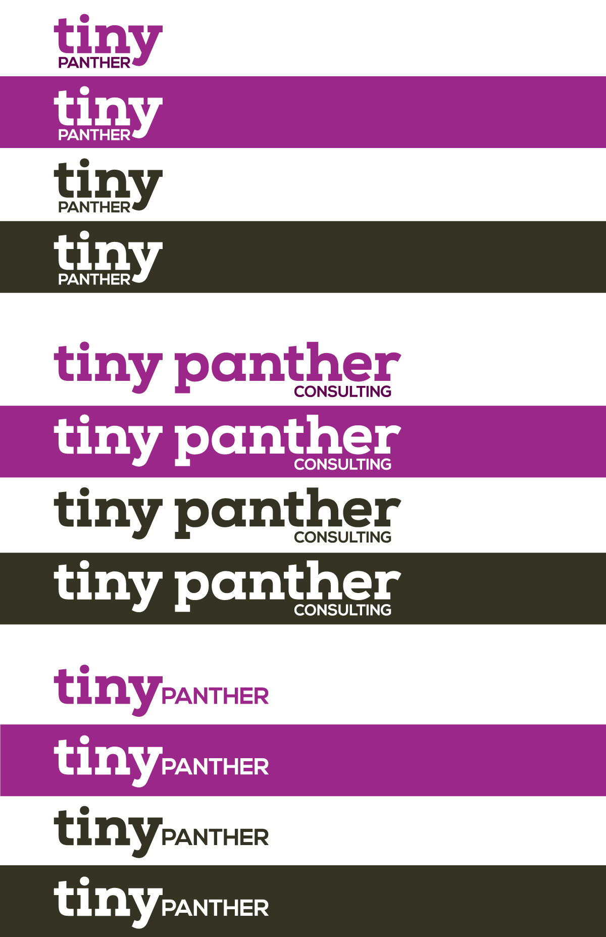 TinyPanther_Style-Guide_1.jpg