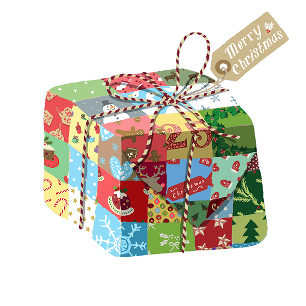 christmas parcel fiona miles