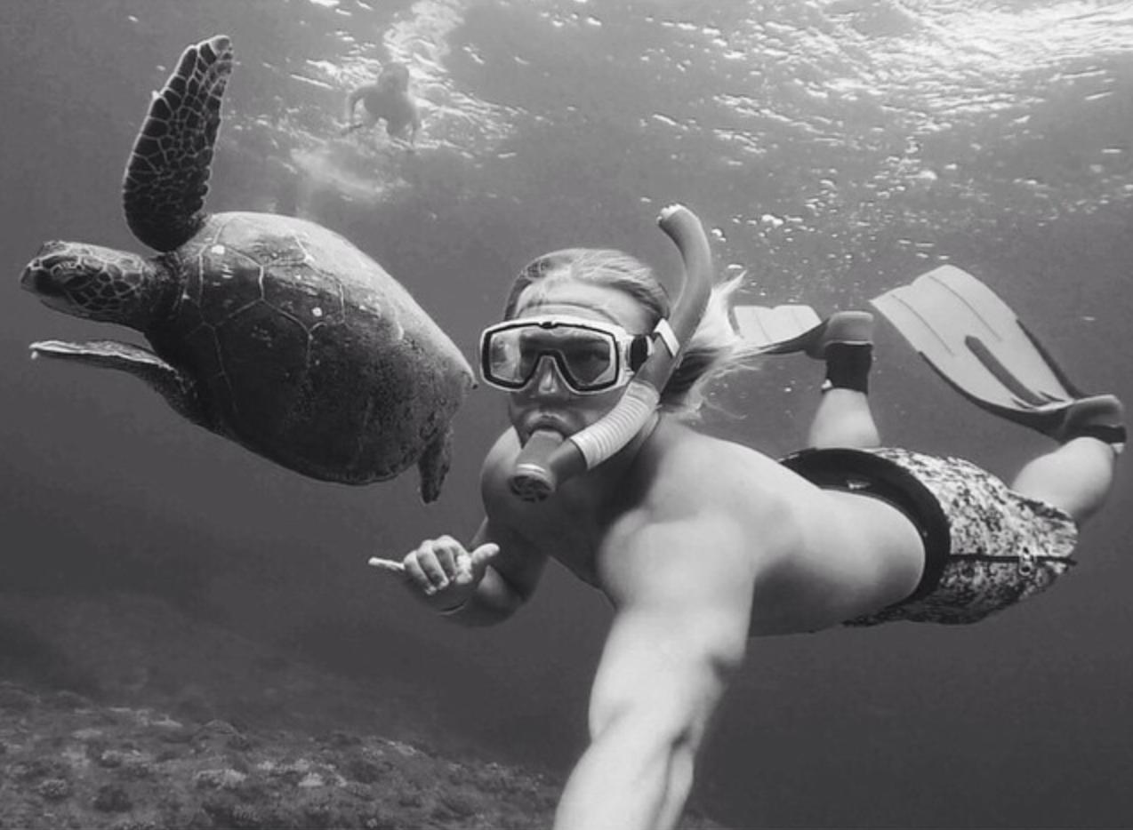 swim with turtle black/white