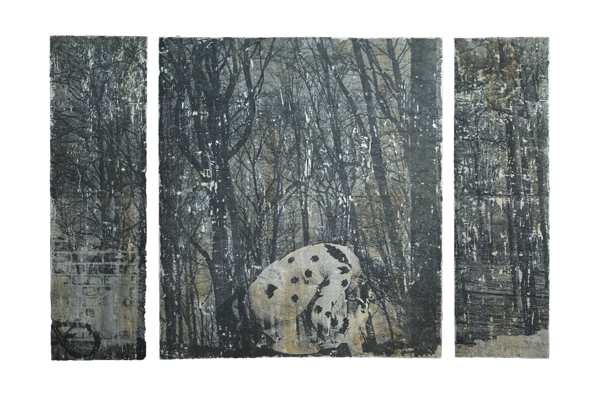 "Into the Woods   Photo Transfer on Wood Triptych . 75""x50"""