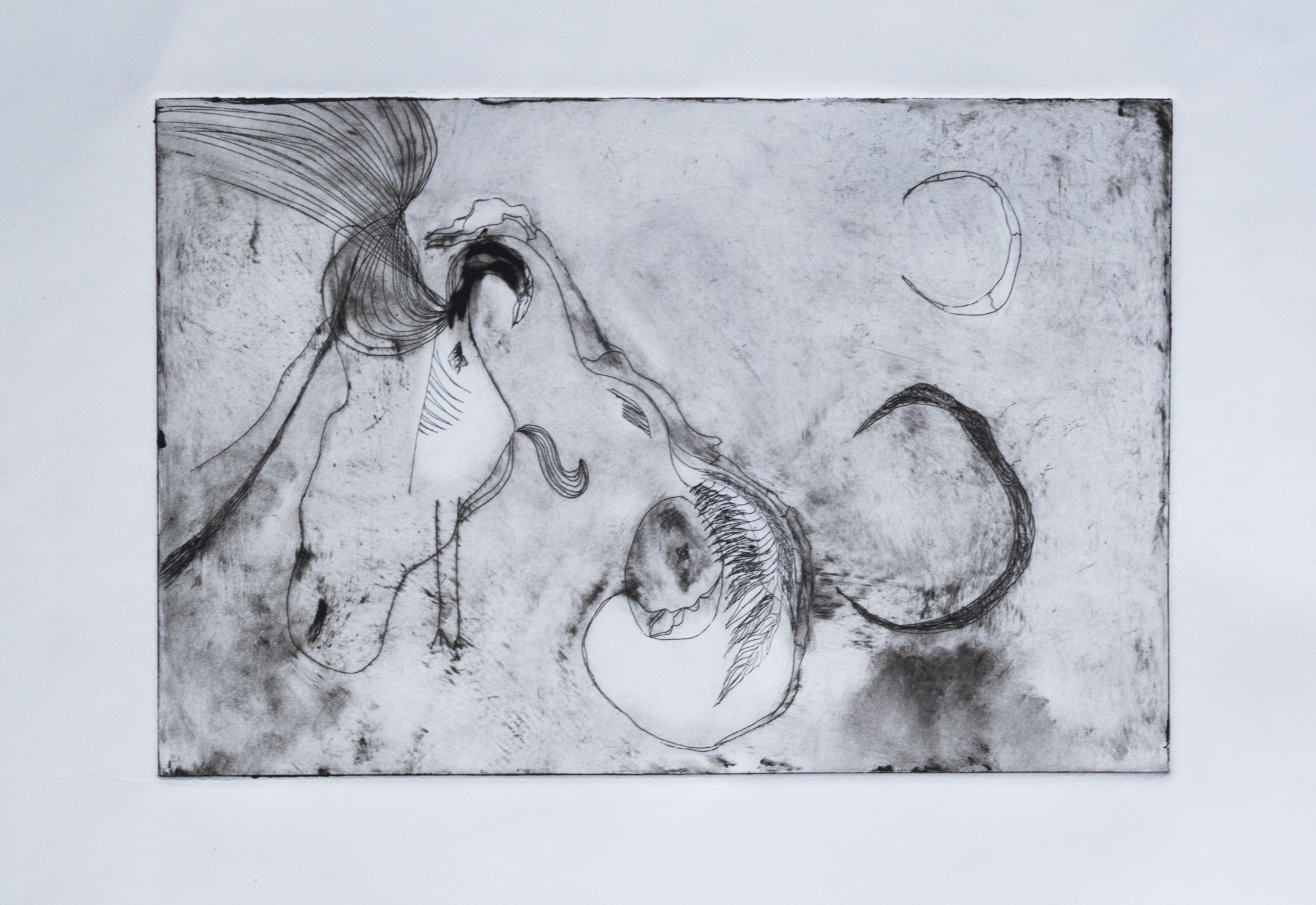 """Etching on Paper, 8""""x10"""""""