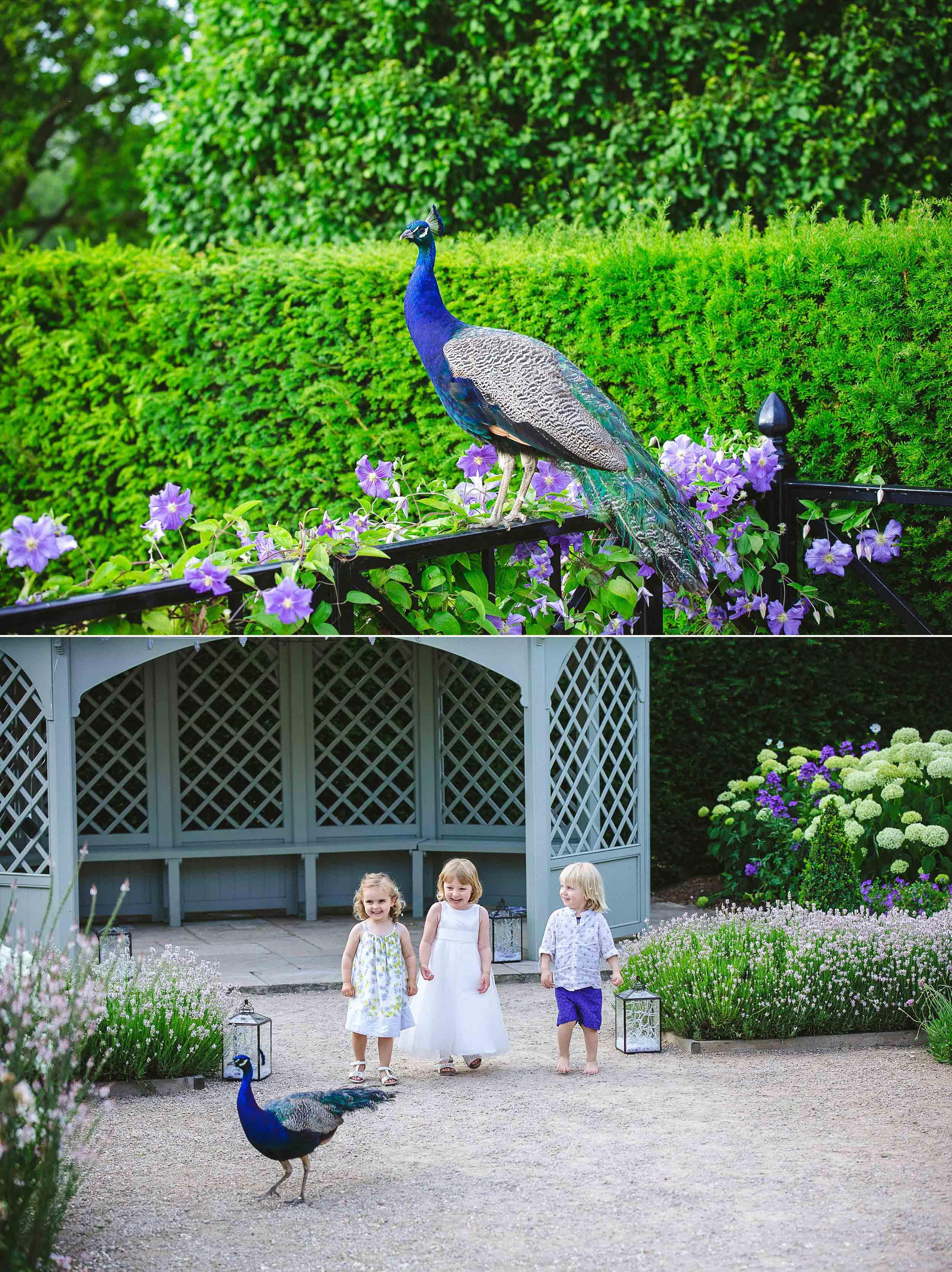 Marks-Hall-Wedding-Photographer-49.jpg