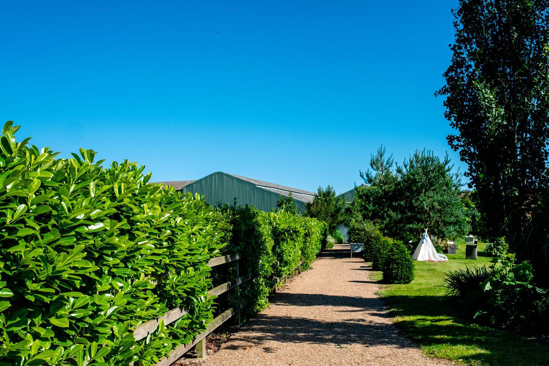 The Barn at Woodlands Norfolk Wedding Photographer_0599.jpg