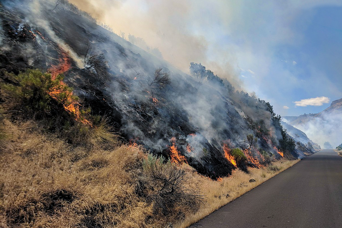 2018 Boxcar Fire one mile southeast of Maupin, Oregon. BLM photo.
