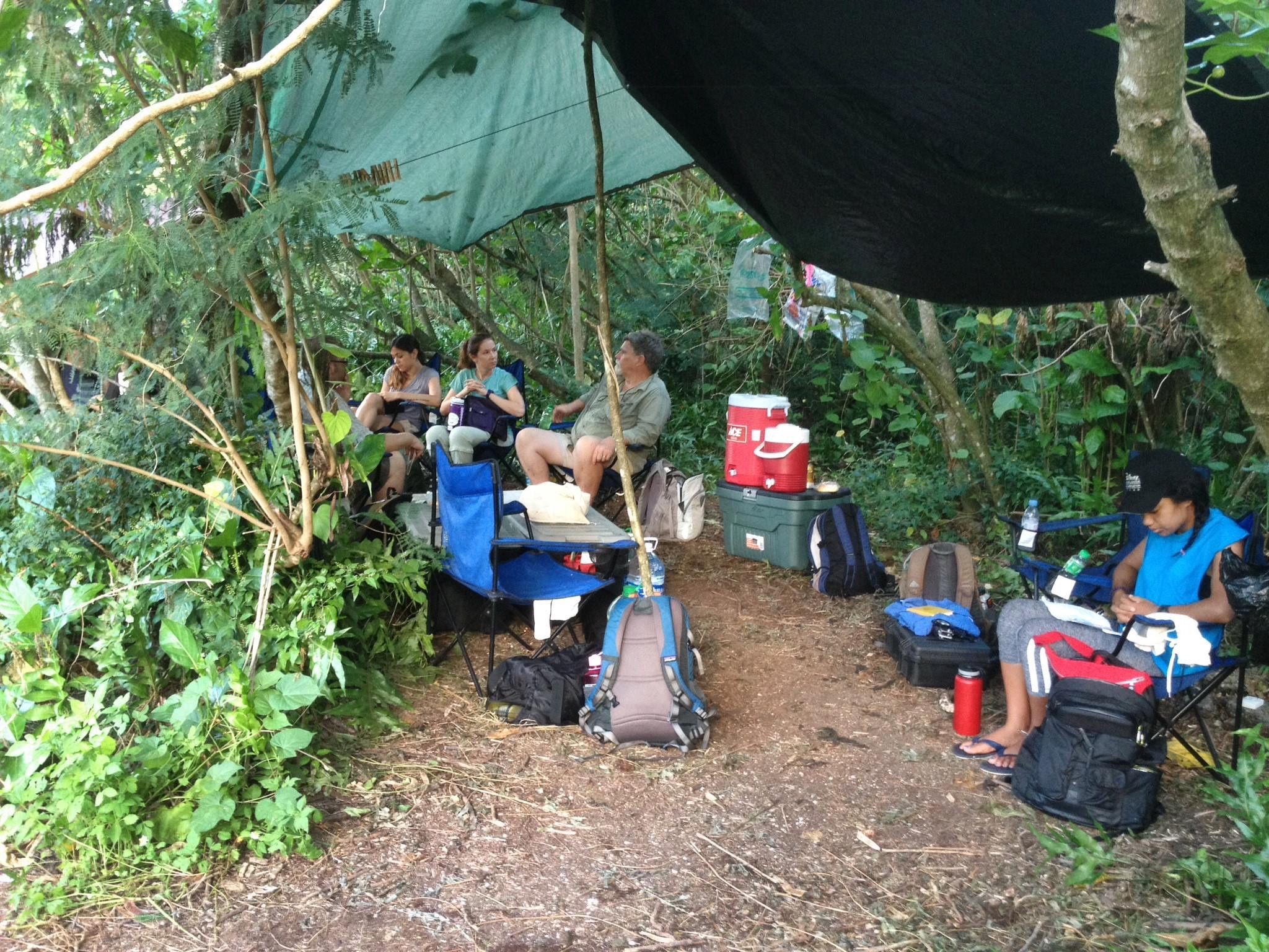 field base camp (photo by Fields of the Memphis Zoo)