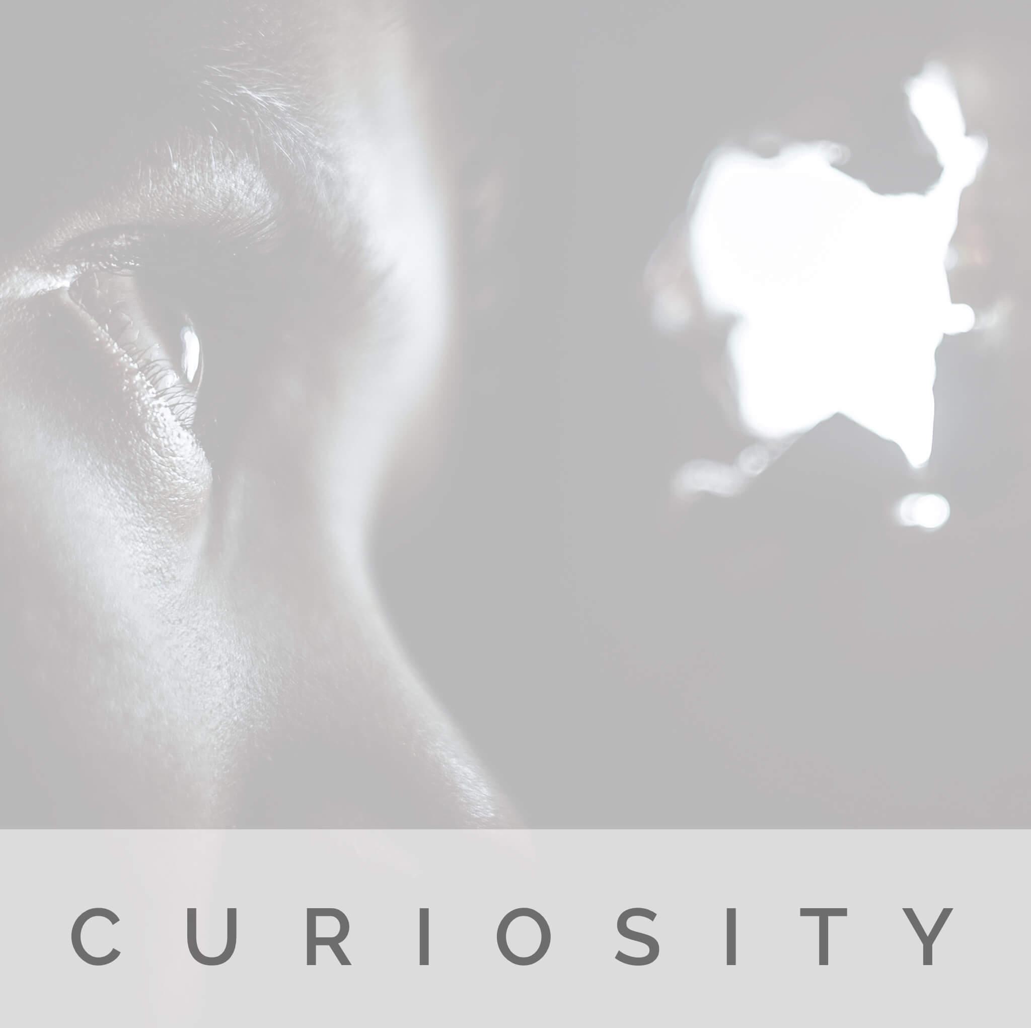 Curiosity   Strength   Signature Wisdom