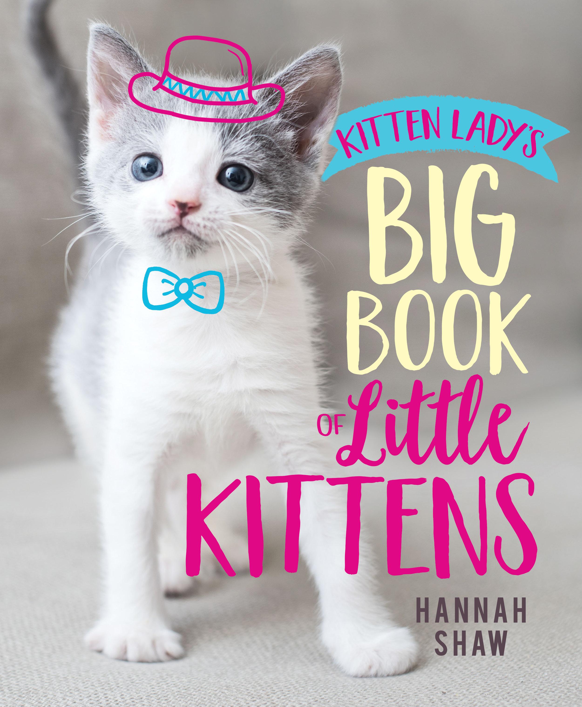 BIG BOOK OF LITTLE KITTENS cover.jpg