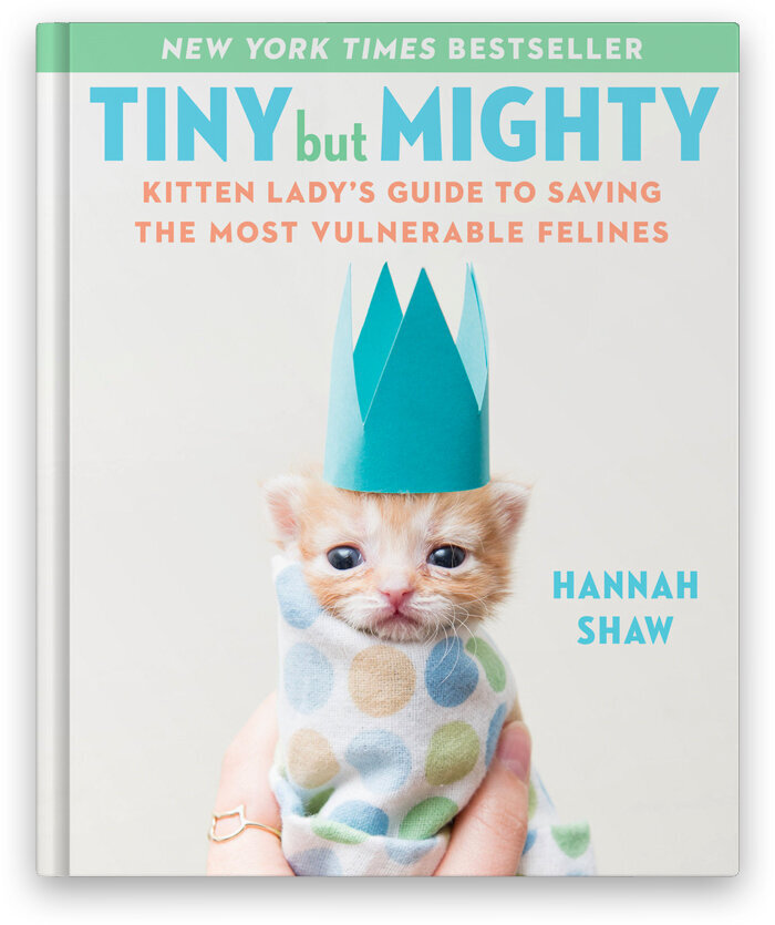 TinyButMighty-cover.jpg